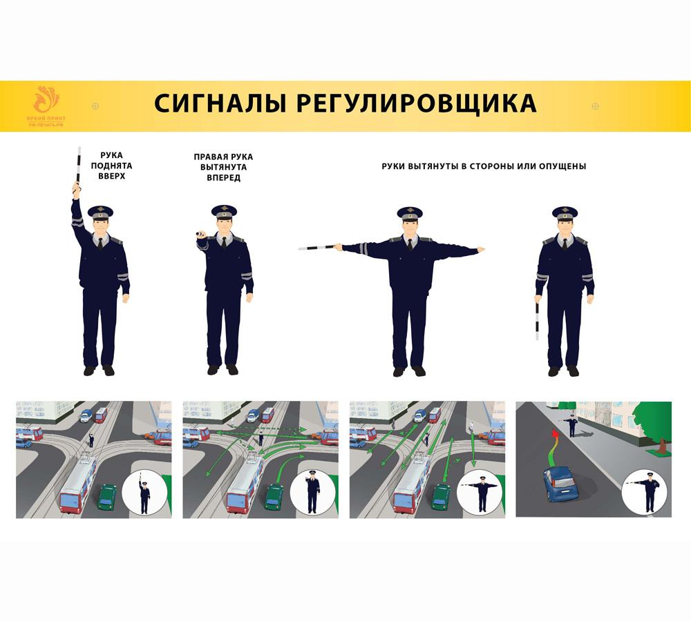 Пдд сигналы регулировщика в картинках с пояснениями